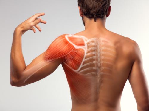 действия при болевых ощущениях в спине